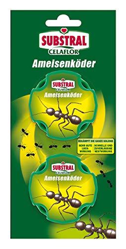 Substral Celaflor Ameisen-Köder, zur Bekämpfung von Ameisen im Haus und auf Terrassen mit schneller Nestwirkung, 2 Stc