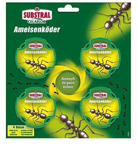Substral Celaflor Ameisen-Köder, zur Bekämpfung von Ameisen im Haus und auf Terrassen mit schneller Nestwirkung, 4 Stc