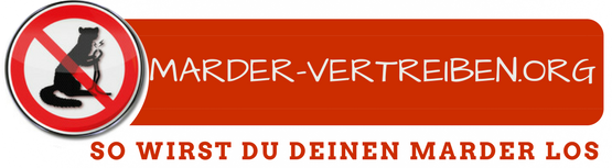 marder-vertreiben.org